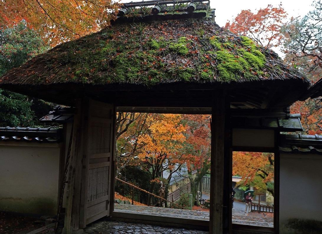 ブログ安楽寺4