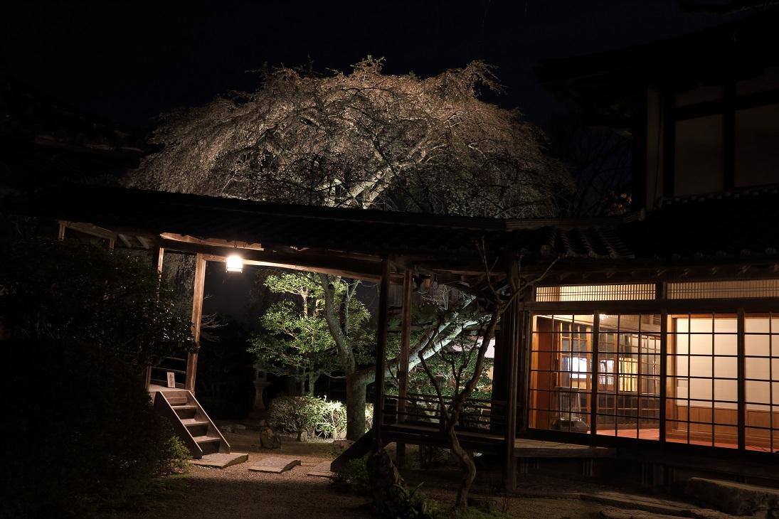 ブログ竹林院庭園入口