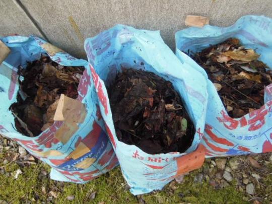 有機肥料 枯れ葉 2701