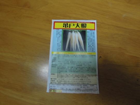 亀戸大根 種蒔き H2703