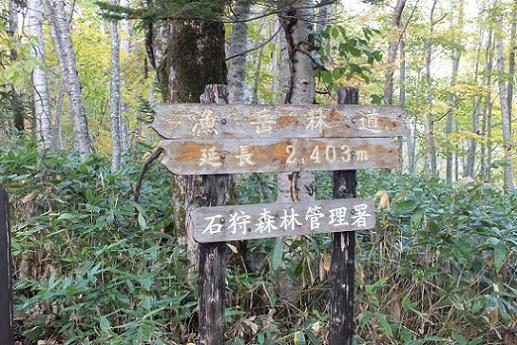 漁岳林道①