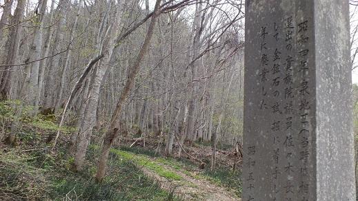 大成鉱山 (2)