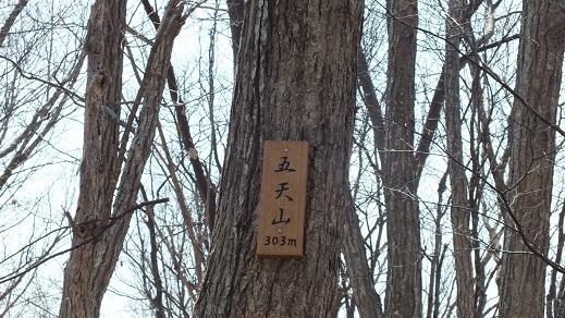 五天山002 (7)●