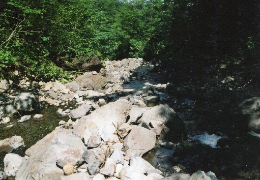大星沢の滝 (2)