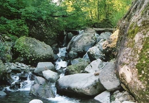 大星沢の滝 (3)