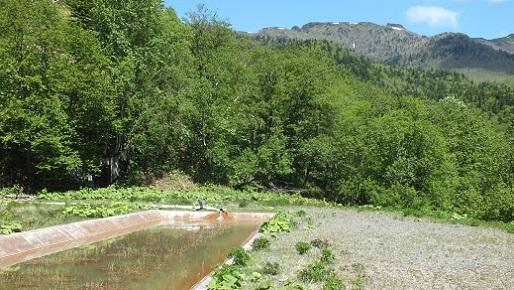 イトムカ鉱山元山 ①(4)