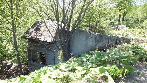 イトムカ鉱山元山 (1)