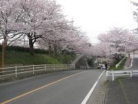 20150331okazu3