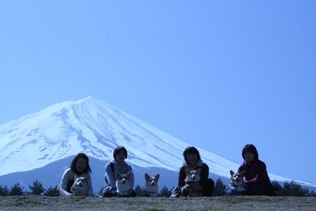 0411富士山1