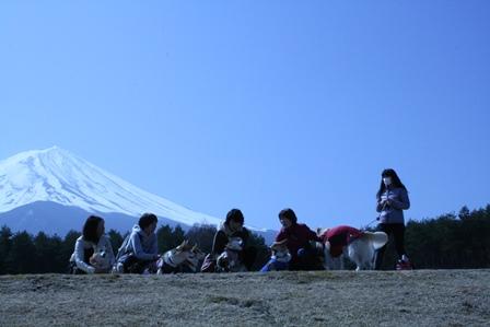0411富士山2