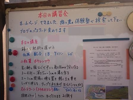 0415畑スタート1