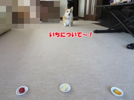 0620どれ2