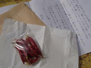 手紙と種子