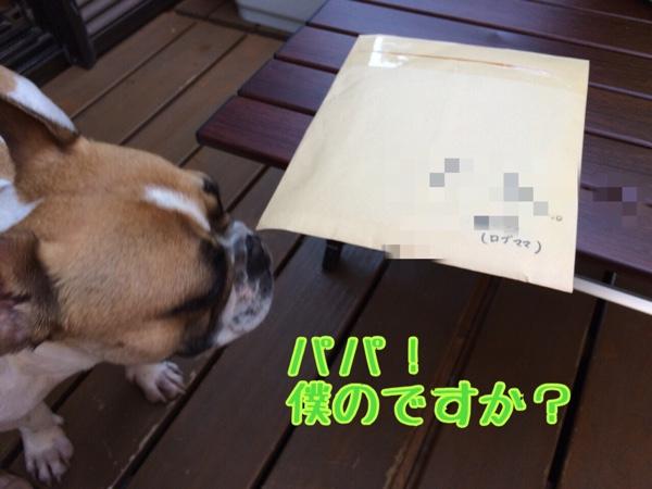 fc2blog_20150502181322837.jpg