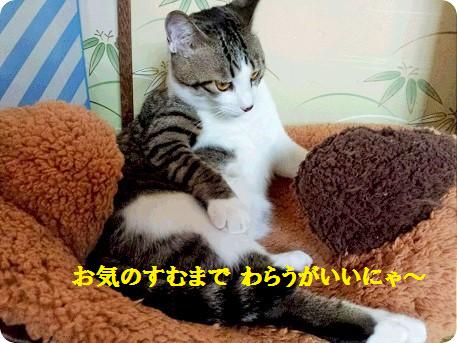 さそり座の男2