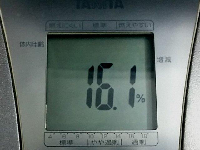 scale_a01.jpg