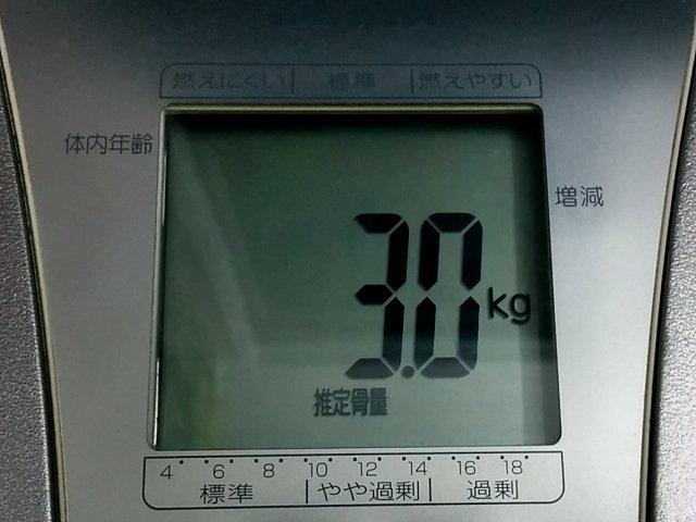 scale_a03.jpg