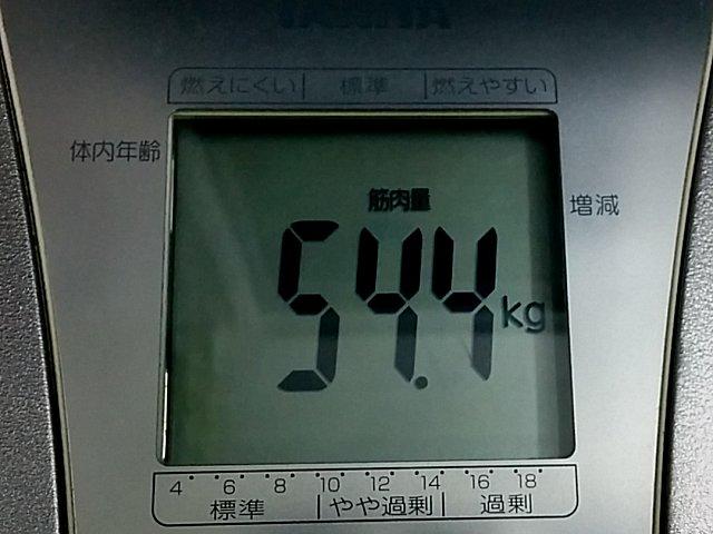 scale_a04.jpg