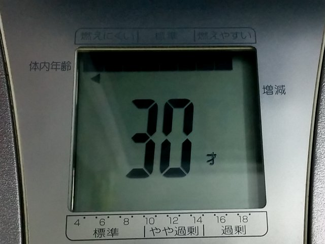 scale_a07.jpg
