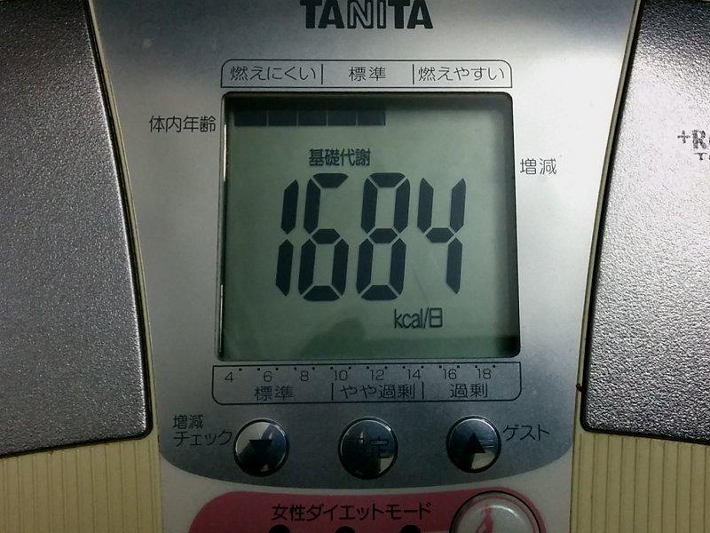 scale_b06.jpg