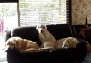 ソファーの3人組