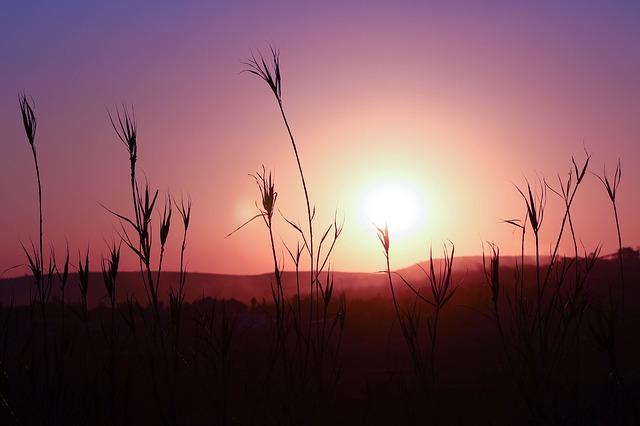 sunset-546370_640.jpg