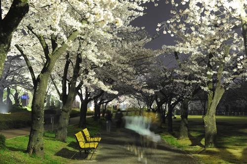 開成山公園09