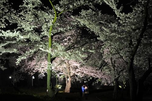 開成山公園11