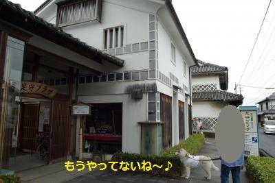 IMGP7850_convert_20150608201930.jpg
