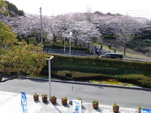 20150329熊本戦52
