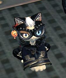 スタイリッシュ猫