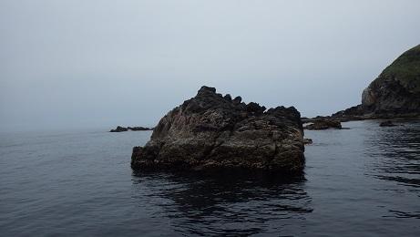 2015.5.9_地内大島 021
