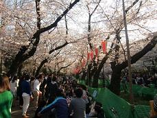 上野公園2