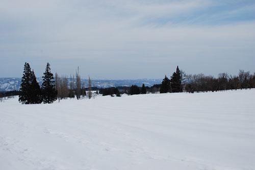 雪原からの眺め