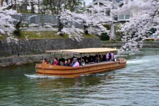 150402okazaki011.jpg