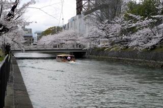 150402okazaki013.jpg