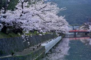 150403okazaki004.jpg