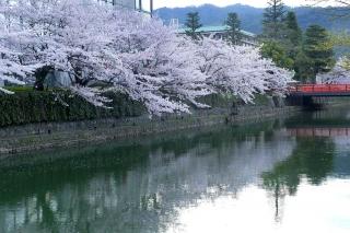 150403okazaki010.jpg