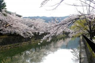 150403okazaki021.jpg