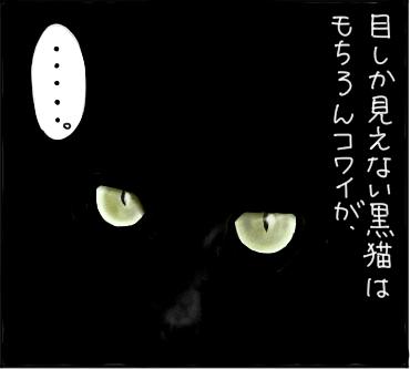 暗闇の猫2