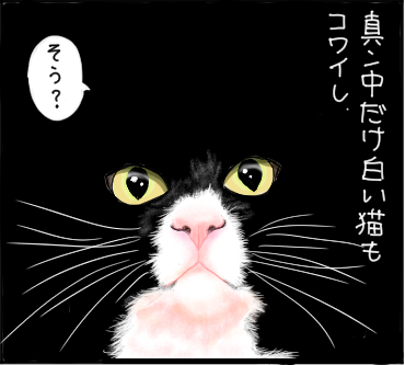 暗闇の猫3