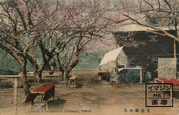01-1320-056 東ー新宿角筈の梅林、銀世界。大正期(131031-027)