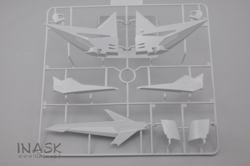 inask-16-D35-info-.jpg