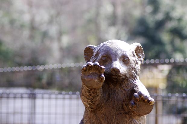 熊がいないぃぃ