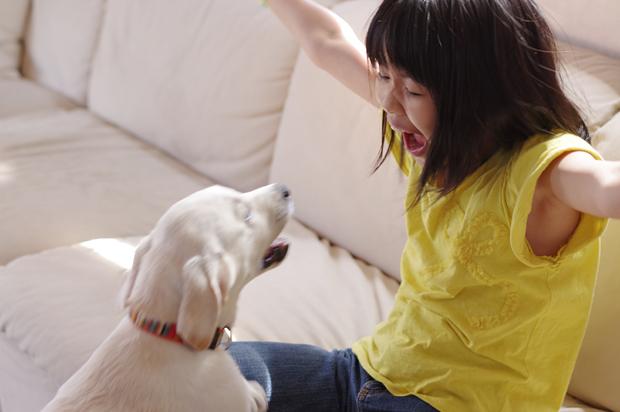 犬を脅すなよー。
