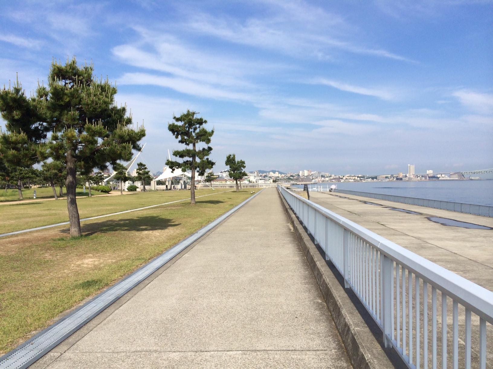 大蔵海岸公園150519