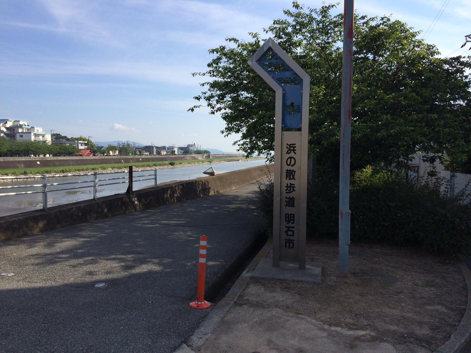 浜の散歩道150519