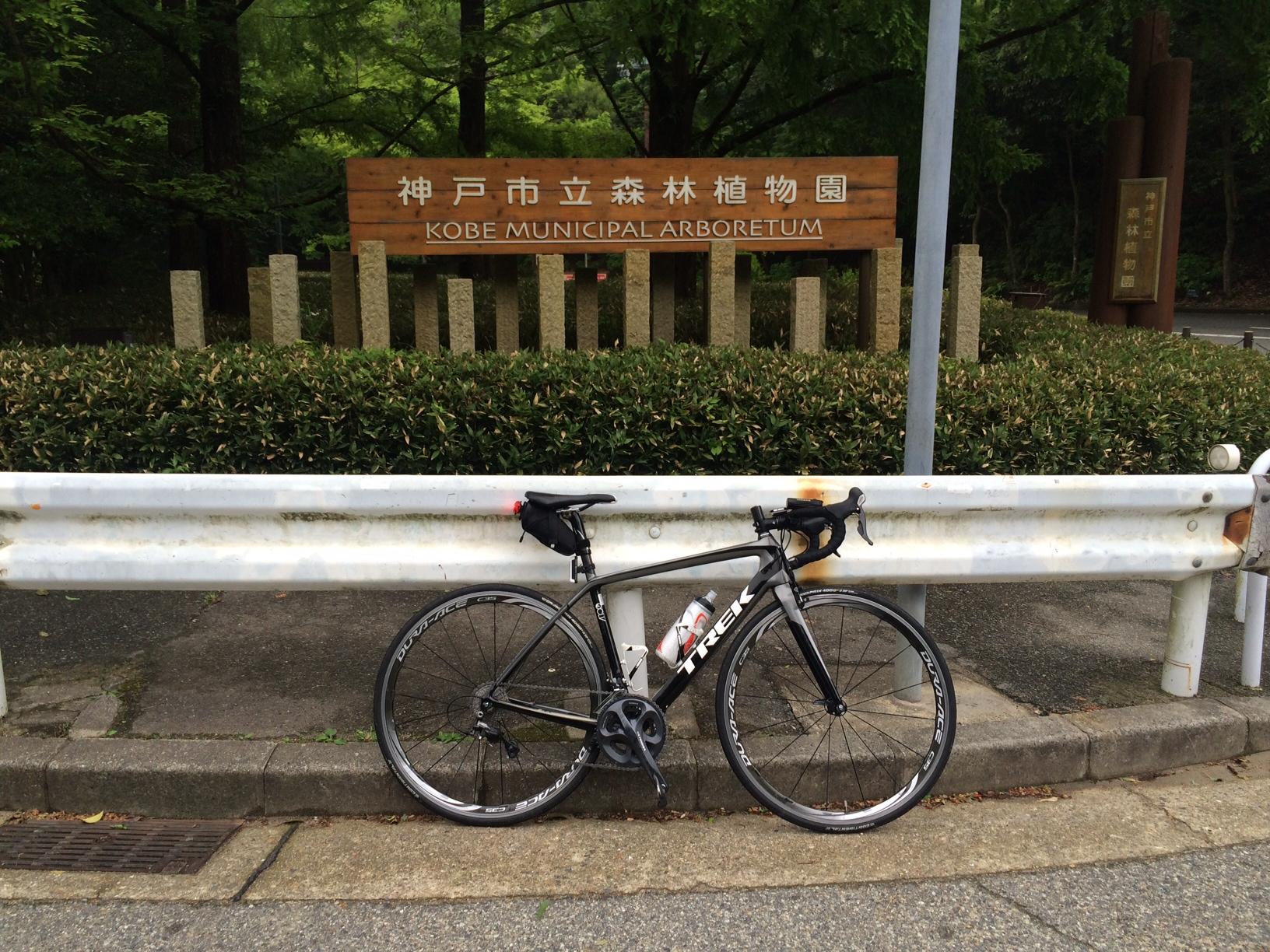 森林植物園150609.JPG