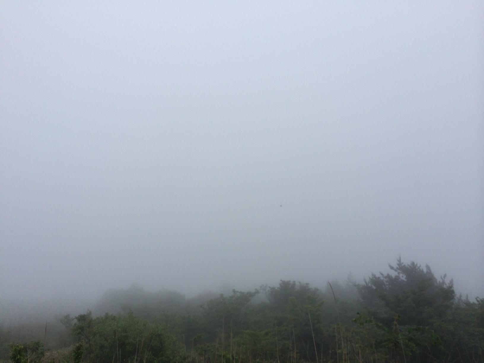 六甲山頂景色150609.JPG