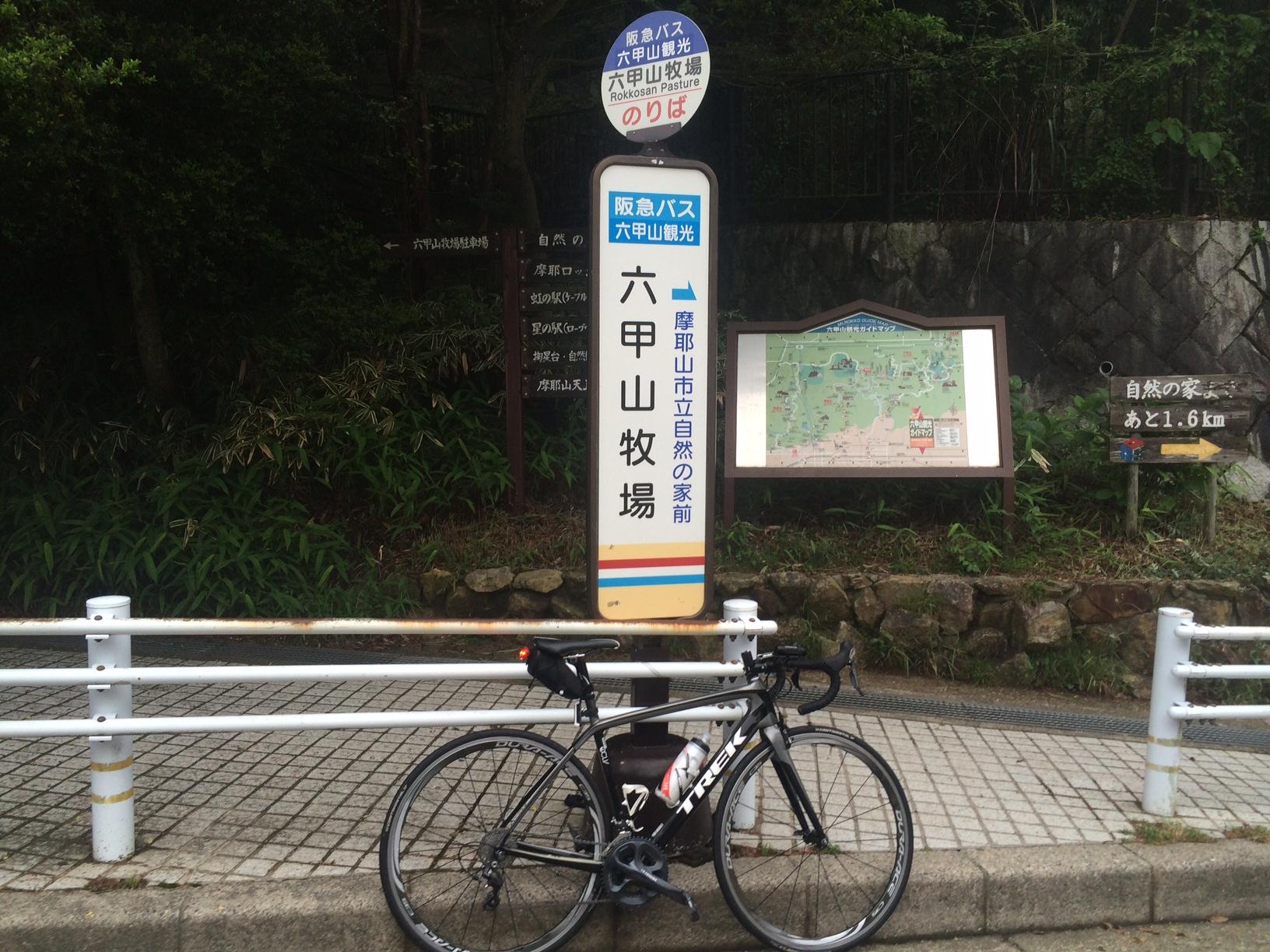 六甲山牧場150609.JPG